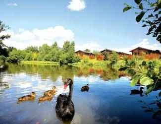 Ashlea Pools Lodges in Shropshire