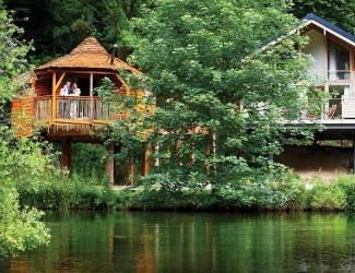 Deerpark Forest Lodges Treehouse