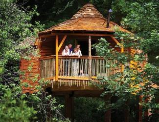 Forest of Dean Lodges Treehouse