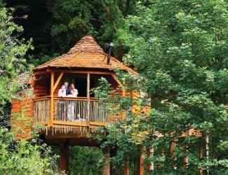 Sherwood Forest Lodges Treehouse