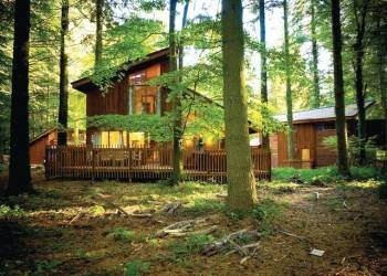 Forest of Dean Lodges in Gloucestershire