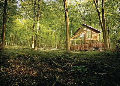 Lodges & Log Cabins in Hampshire & New Forest