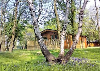 Lodges & Log Cabins in Oxfordshire